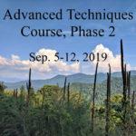 Advanced Techniques Course Phase 2